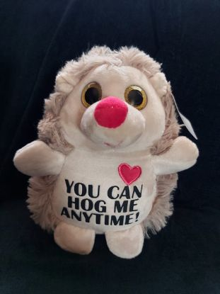 Picture of Personalized Plush Hedgehog